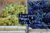 raisin muscat