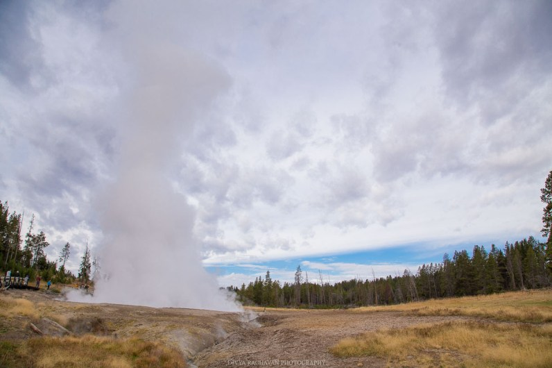 Geysor, Yellowstone National park