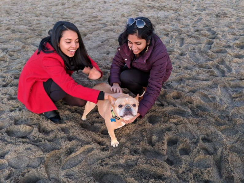 Cuddles from canines at Baker's beach -- gonewithawhim.com -- Postcards from San Francisco, California