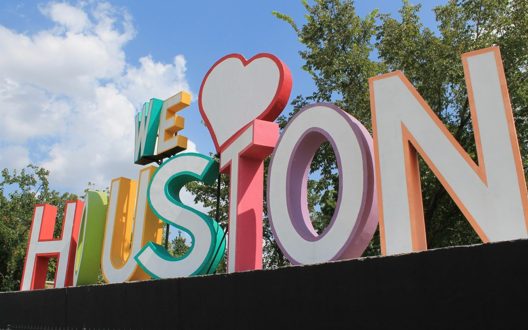 Houston With Kids + How Much Does It Cost?