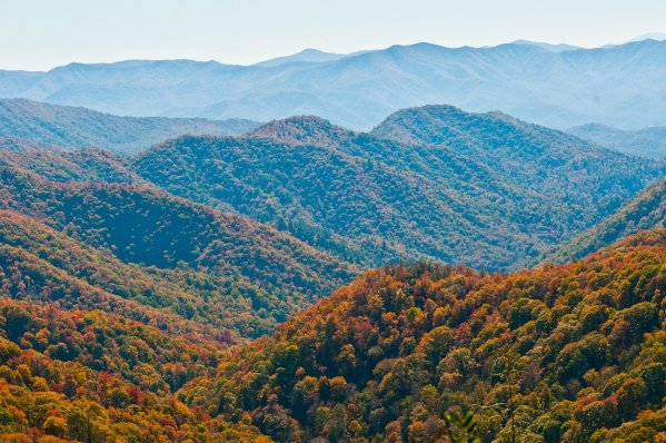 18 Things To Do In Sevierville, Tennessee With Kids