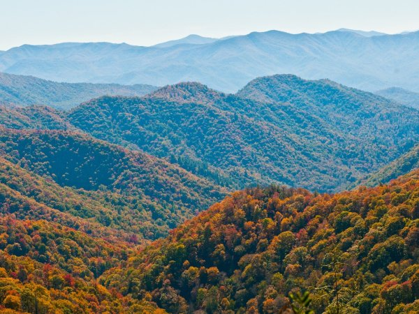 18 Things To Do In Sevierville, Tennessee
