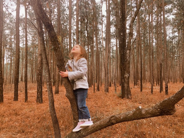my daughter standing in tree along the trail, looking up at the sky