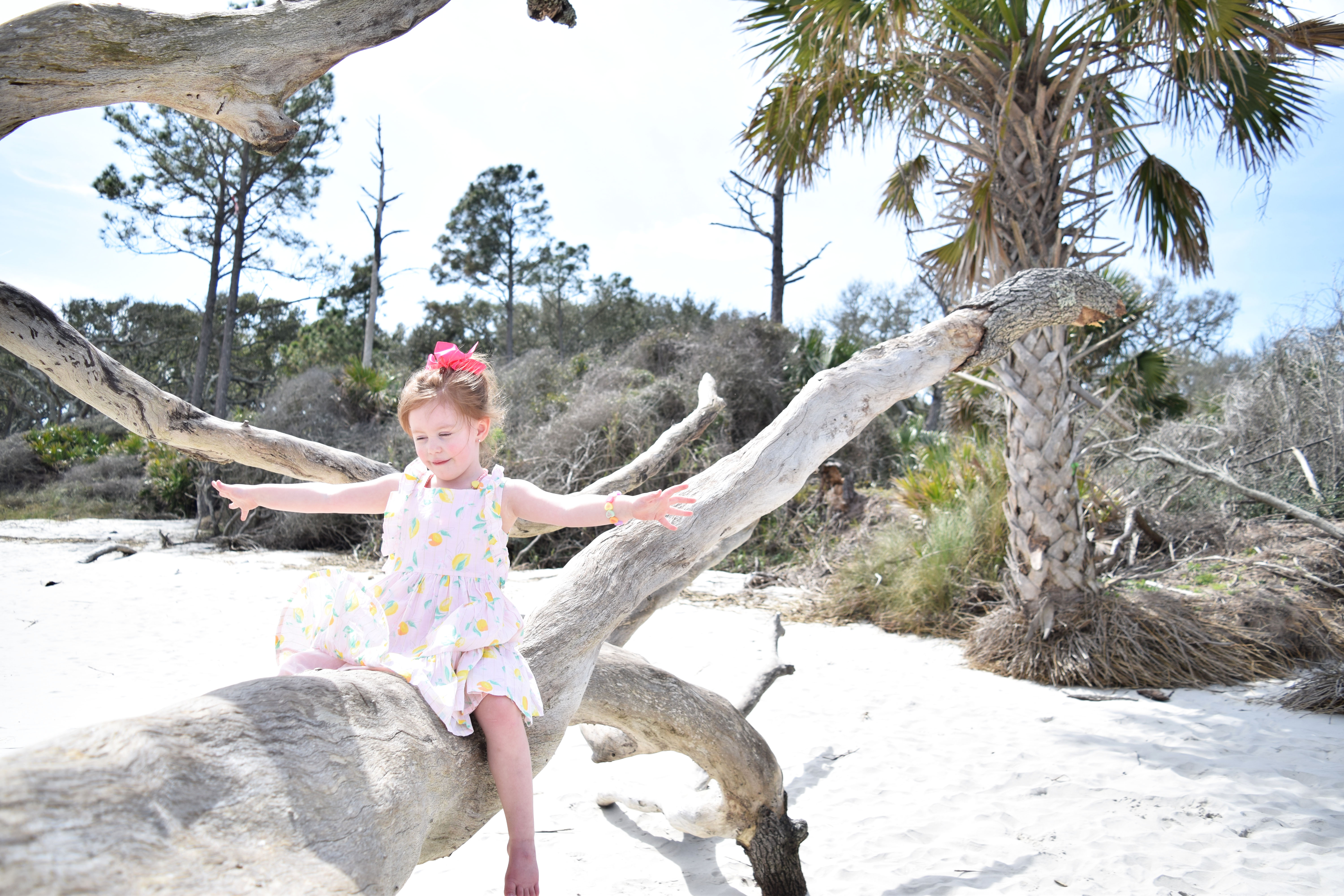 Comprehensive Guide To Jekyll Island Travel With Toddlers