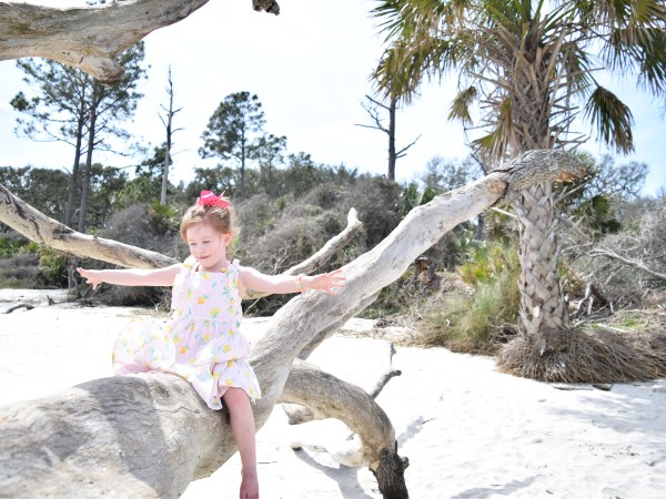 Comprehensive Guide To Jekyll Island With Kids