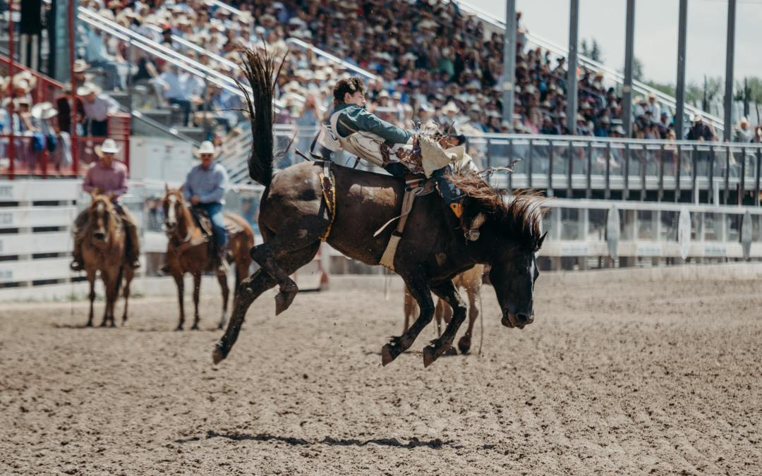 Things To Do In Cheyenne Wyoming: 4 Ways To Have An Amazing Time