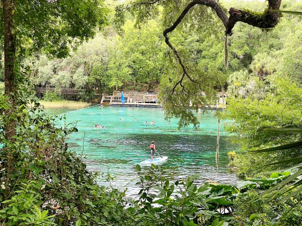 39 Amazing Things To Do In Florida With Kids