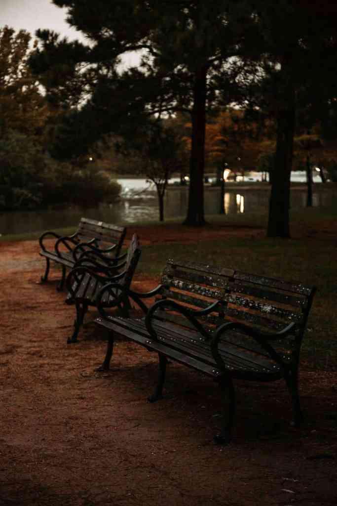 benches in hermann park in houston