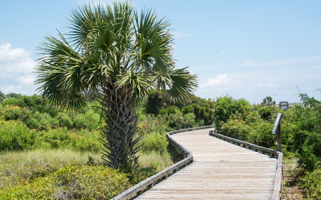 20 Amazing Things To Do In Myrtle Beach With Kids