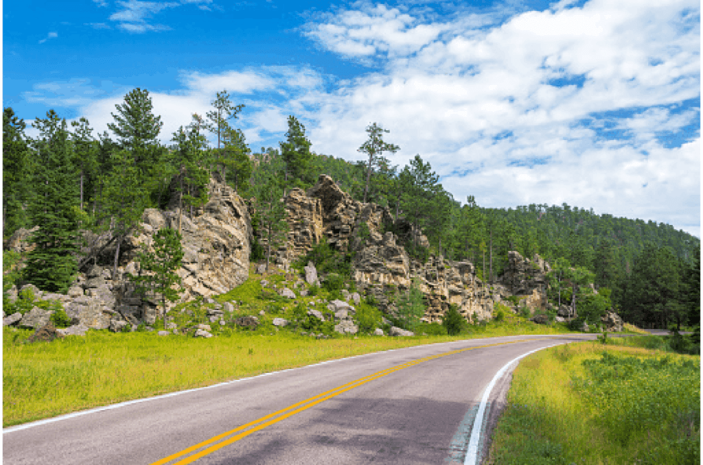 road through trees and mountains in the black hills, one of the best things to do in south dakota