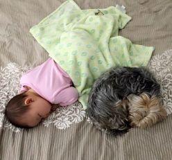 Baby Milestones Sleeping In Own Bedroom