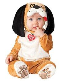 Baby Halloween Costume dog