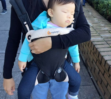 Ergo Baby 360 Carrier