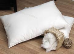 Organic Pillows - Organic Lifestyle Cotton Pillow
