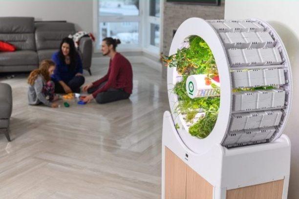 Indoor Garden - OGarden Smart for Organic Vegetables and Fruits