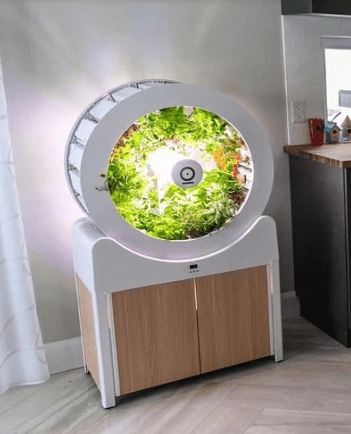 Indoor Garden - OGarden Smart