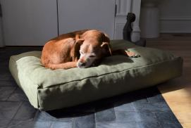 Non Toxic Dog Gifts - Hemp Dog Bed LATEX FILLED