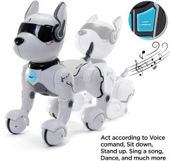 Non Toxic Gifts For Preschoolers - Top Race Store Remote Control Robot Dog Toy