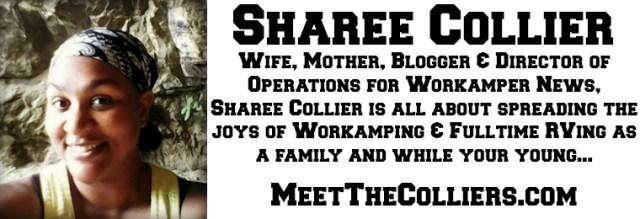 ShareeBlogger Bio