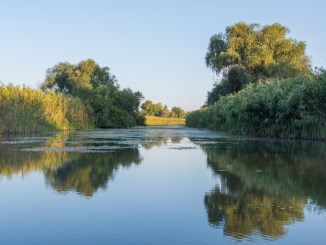 Peisaj din Delta Dunării. FOTO APDLT