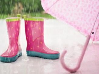 Avetizare de ploi abundente. FOTO jill111