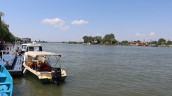 Delta Dunării. FOTO Adrian Boioglu