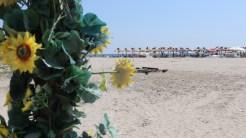 Plaja din Sulina. FOTO Adrian Boioglu