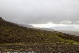 Horft til suðurs frá Dyradal að Engidal og Húsmúla.