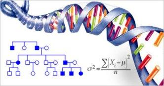 Genetics-and-Statistics