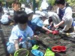 砂遊びをする子どもたち