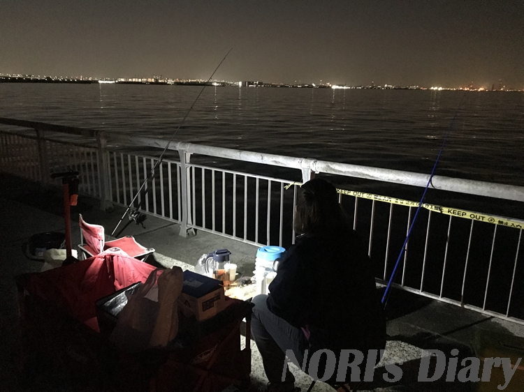 夜釣り風景