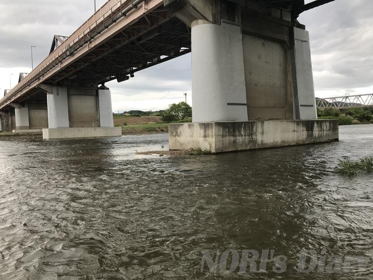 増水している木津川