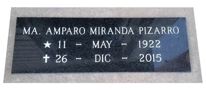 """Granito negro fino placa de 60 x 20 x 3 cm. (23""""x8"""") (Piedra natural pulida)"""