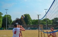 Volleyball #3