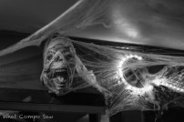 Halloween #37