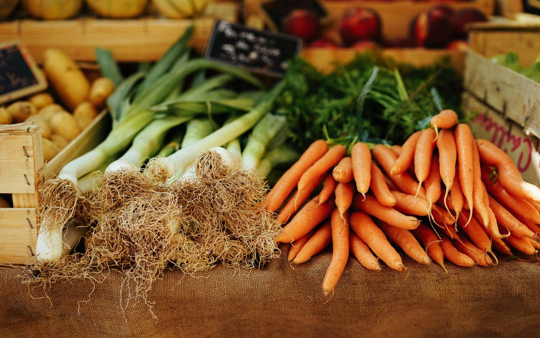 The Importance of Fibre in Your Diet