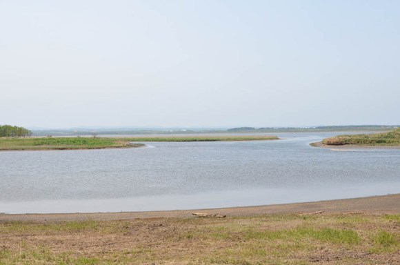 North Okhotsk Prefectural Natural Park, Poro Swamp, Sarufutsu