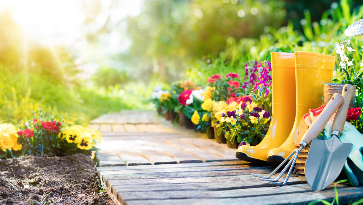 Yellow wellies on a garden path