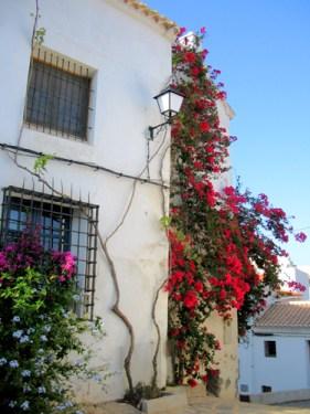 House in Almeria Spain