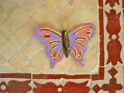 Butterfly on floor