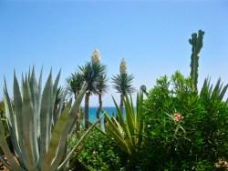 Mojacar coast