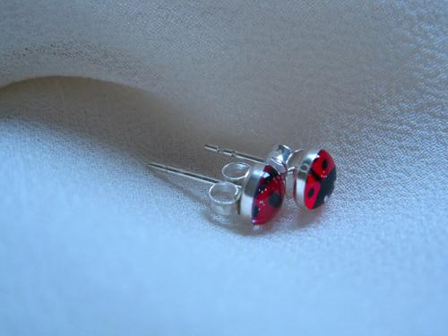 Lucky ladybird stud earrings