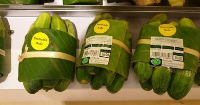 Supermarkets in Thailand Are Replacing Plastic Packaging With Banana Leaves