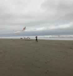 Kite_Flying_2