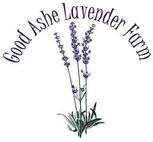 Good Ashe Lavender Farm