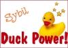 duckpower-sybil.jpg