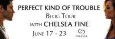 Perfect-Kind-of-Trouble-Blog-Tour4