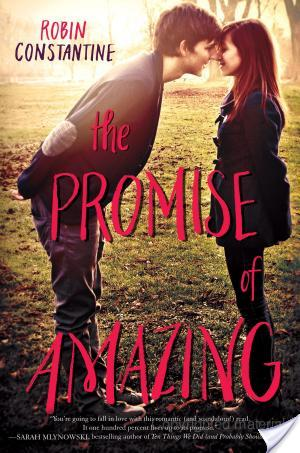 The Promise Of Amazing by Robin Constantine | Book Review