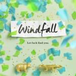 Windfall by Jennifer E. Smith basically continues the pattern OF EXCELLENCE that I've come to experience from Smith's books.