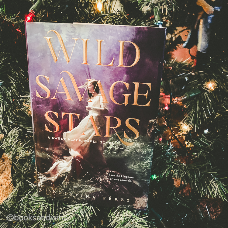 Wild Savage Stars | Bright Raven Skies by Kristina Perez | Reviews